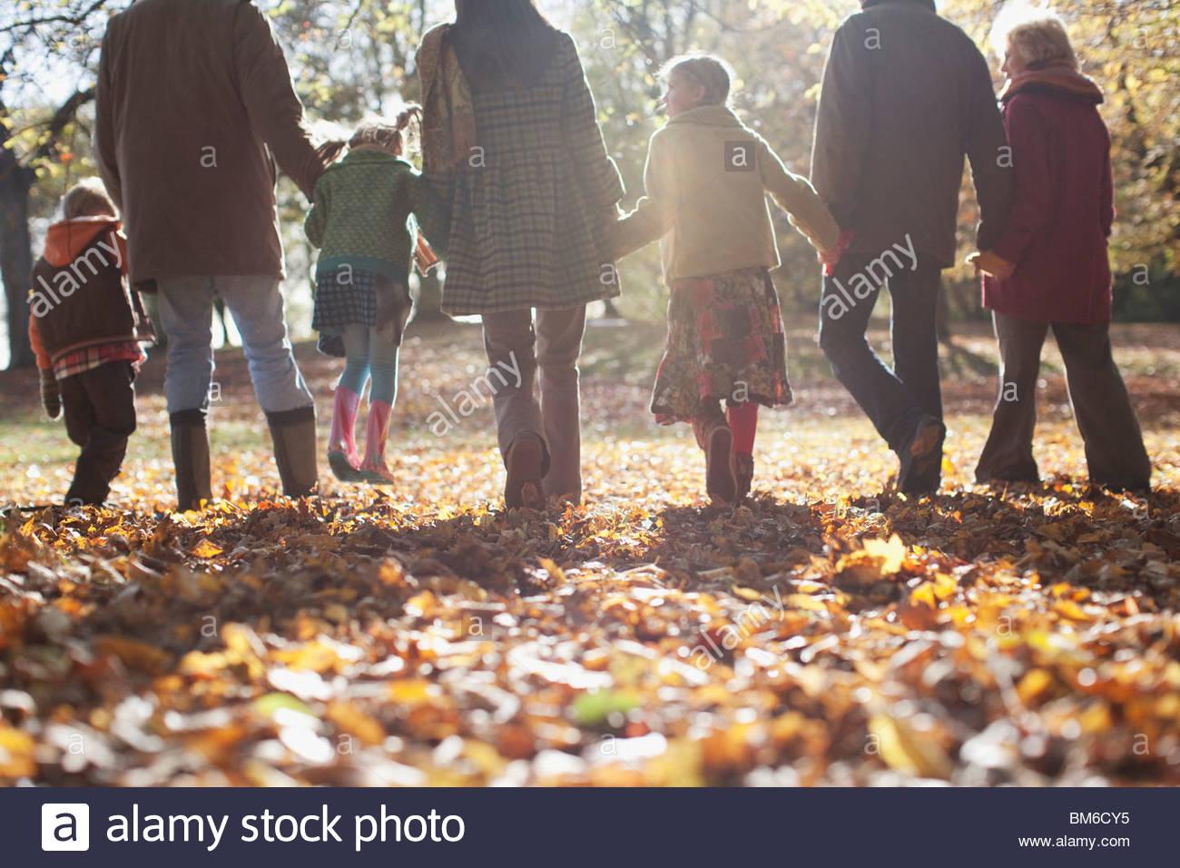 Famiglia estesa tenendo le mani e passeggiate all'aperto Immagini Stock