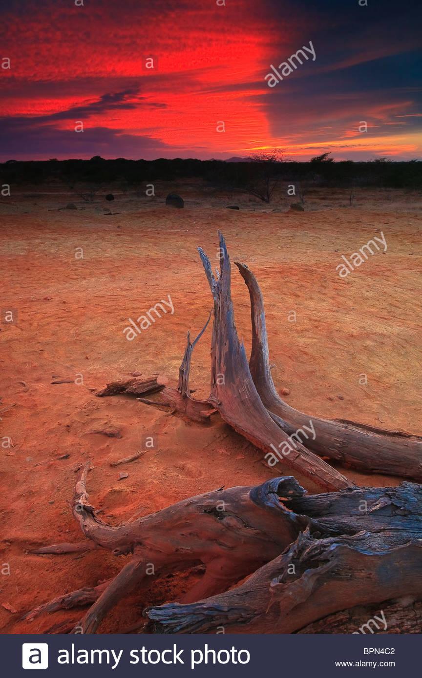 Tramonto in Sarigua national park (deserto), Herrera provincia, Repubblica di Panama. Immagini Stock