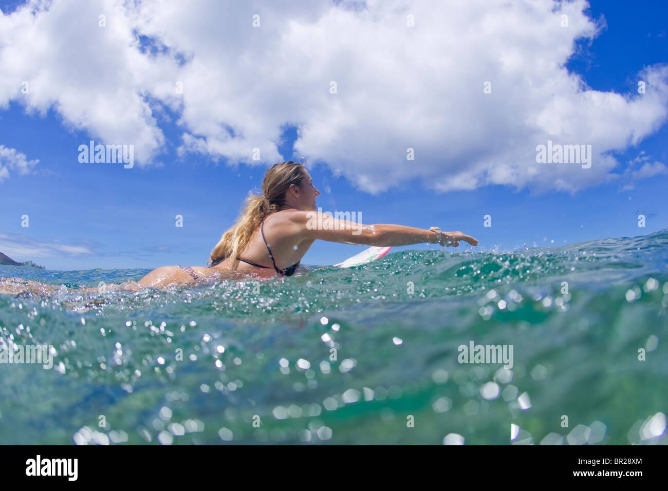 Ragazza paddling tavola da surf Immagini Stock