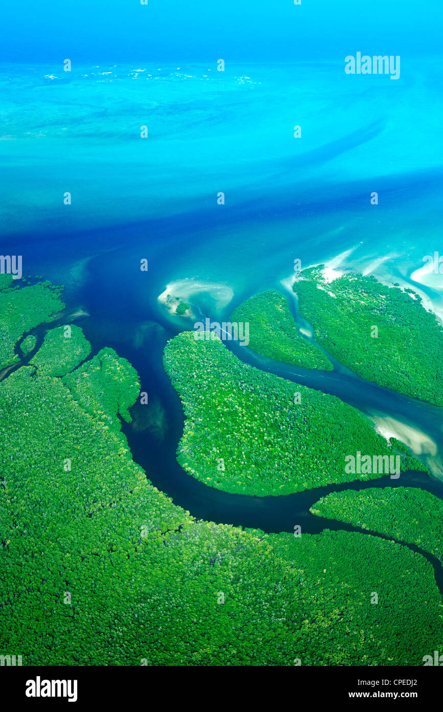 Mangrovie lungo la costa delle Quirimbas National Park in Mozambico. Immagini Stock