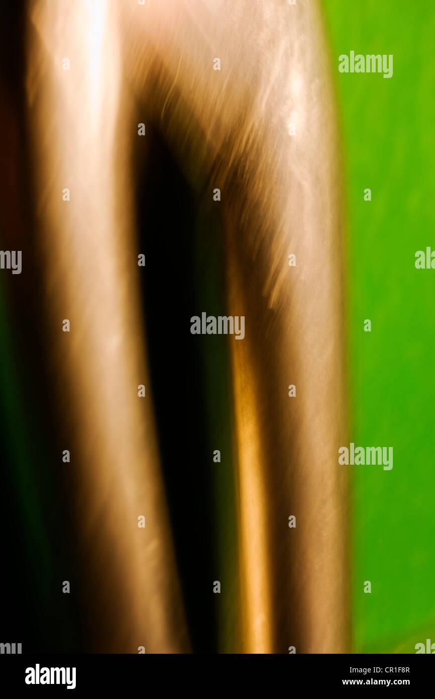 Extreme closeup di forbici. Immagine astratta prese con elevato ingrandimento Lenti macro. Immagini Stock