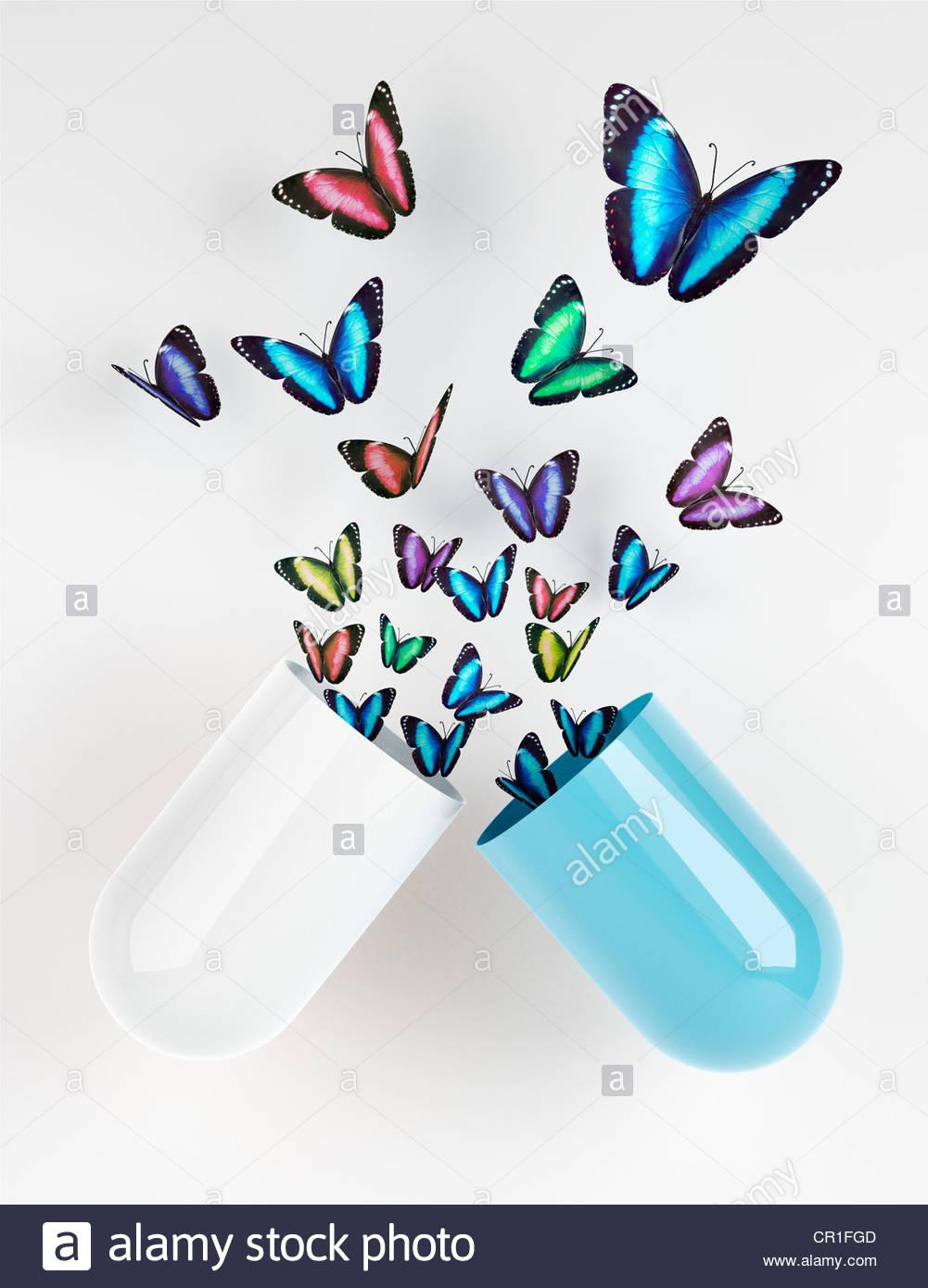 Farfalle emergente dalla capsula Immagini Stock