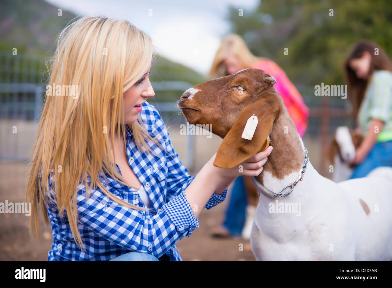 Bambini su allevamento di prendersi cura degli animali Immagini Stock