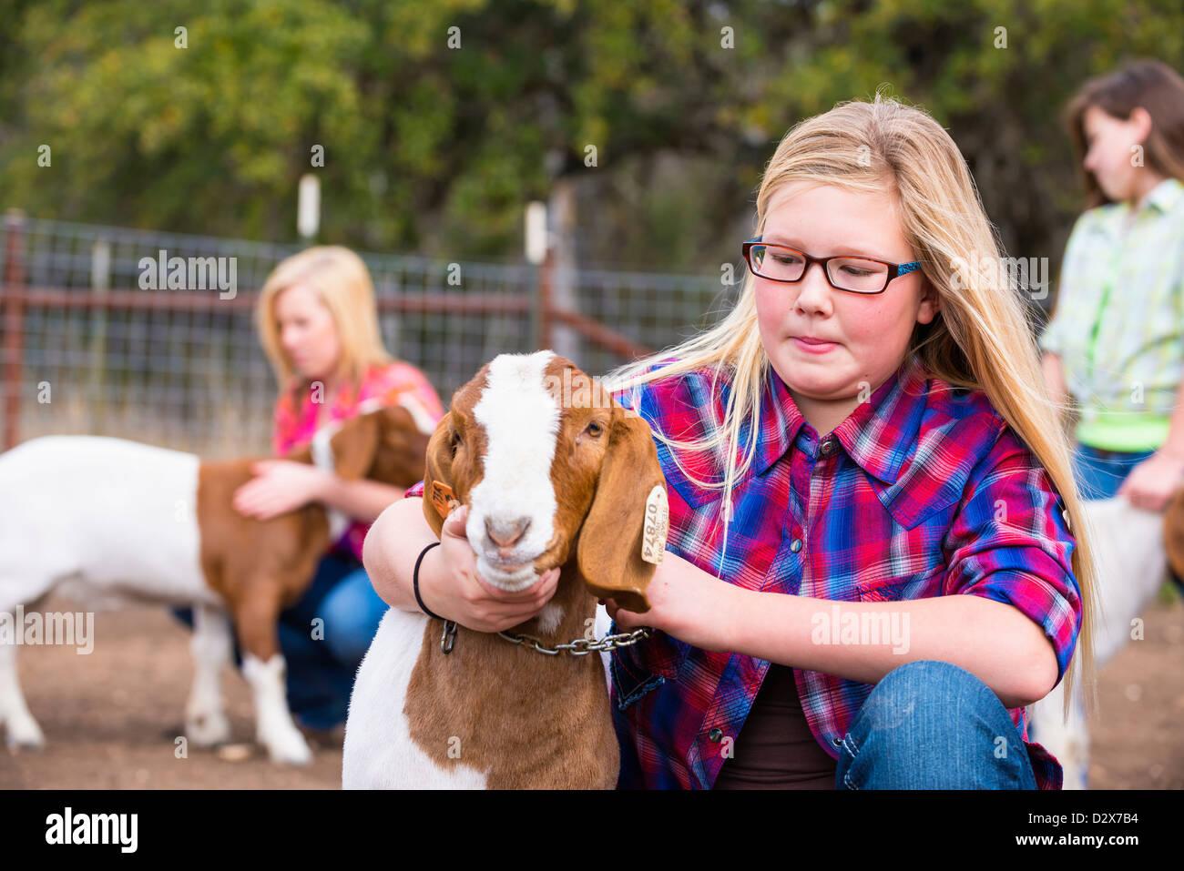 Azienda Agricola Le ragazze prendendo cura del bestiame capre, petting e toelettatura per uno stock mostra Immagini Stock
