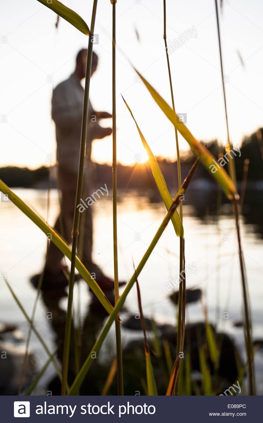 Uomo che cammina nel lago con erba di fuoco Immagini Stock