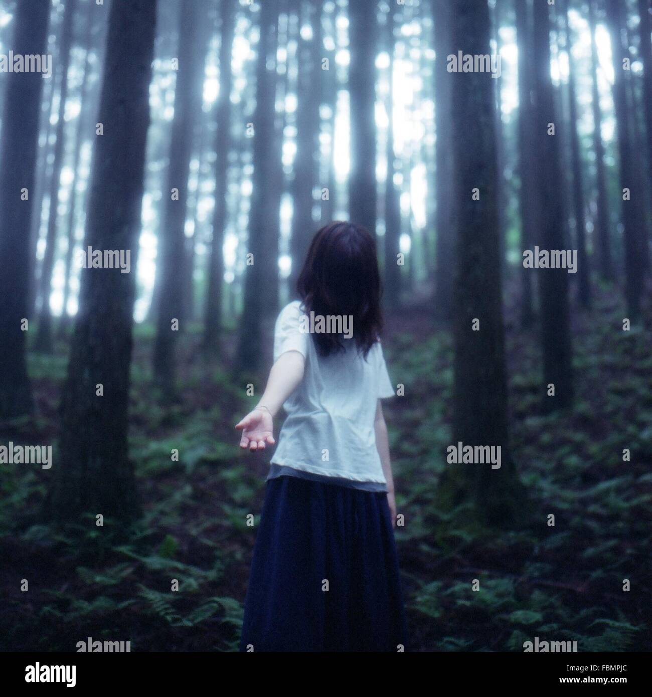 Lone Donna nella foresta Immagini Stock