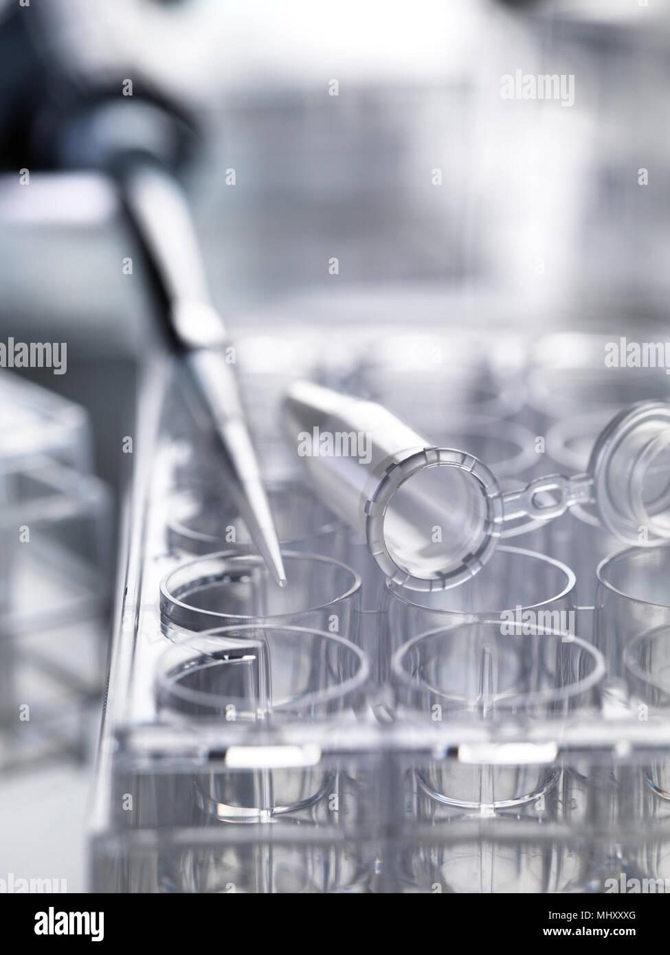 Pipetta utilizzata per erogare campioni seduti sul multi pozzetto piastre usate in esperimenti di laboratorio Immagini Stock