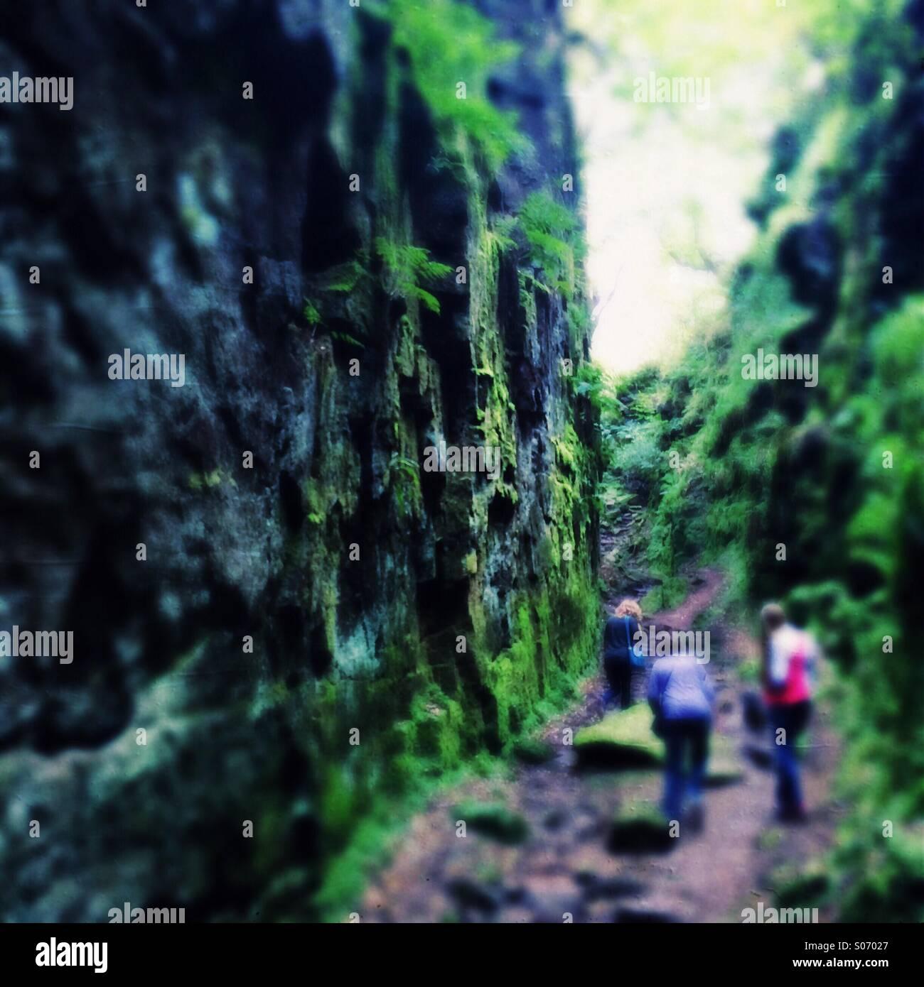 Tre persone in un verde gola rocciosa Immagini Stock