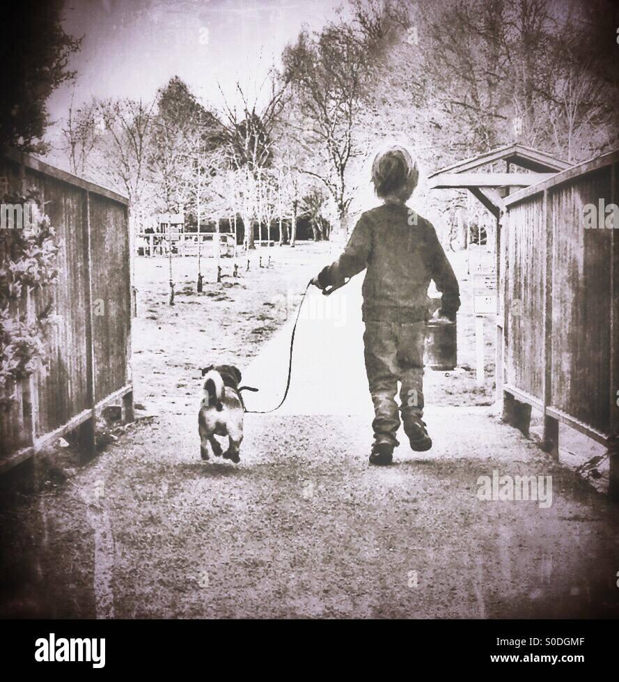 Passeggiate con il cane Immagini Stock