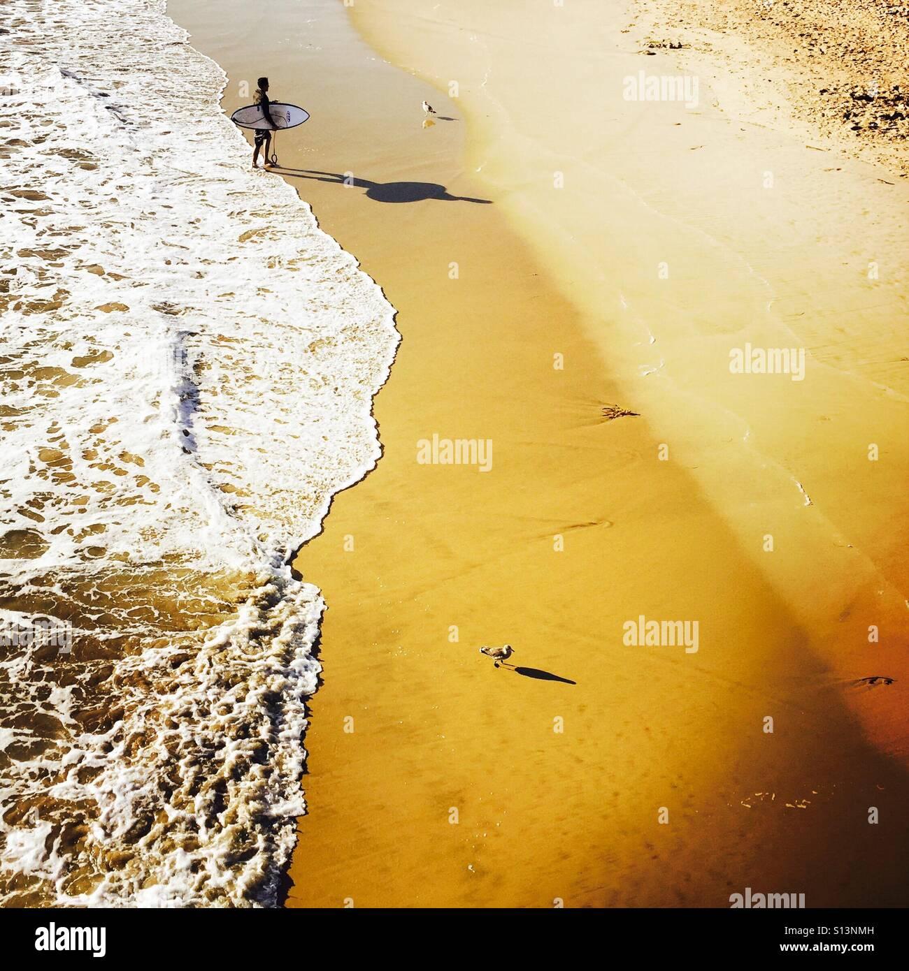 Un surfista maschio passeggiate fino alla spiaggia dopo la navigazione. Manhattan Beach, California USA. Immagini Stock