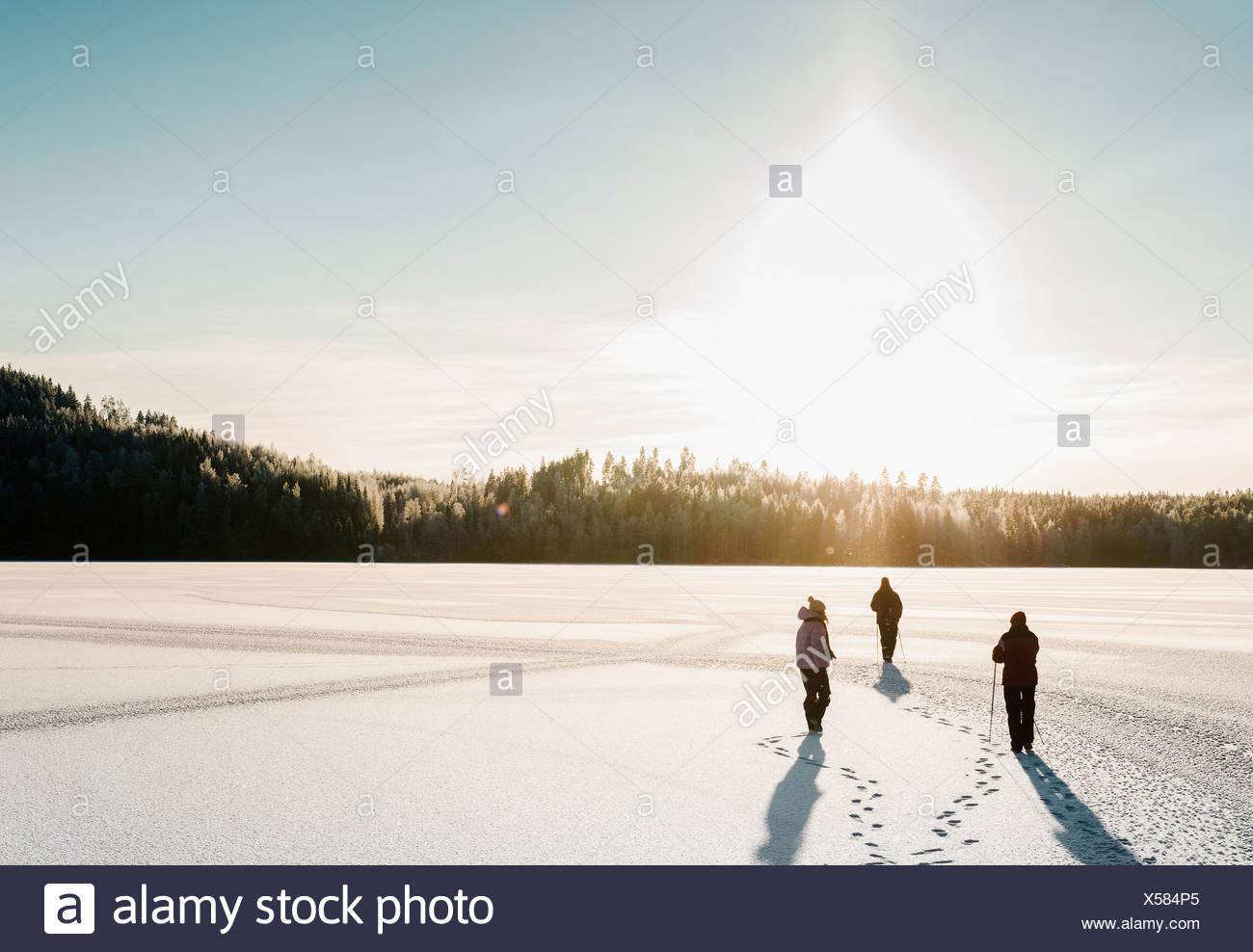 Tre persone nordic walking attraverso la coperta di neve campo Immagini Stock