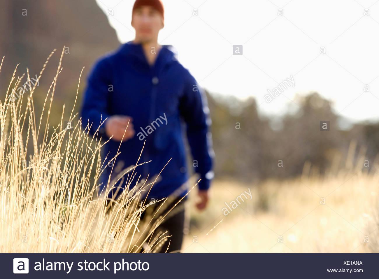 Un uomo in una giacca blu passeggiate lungo un sentiero in Oregon, mentre il giallo erba onde la brezza. (Fuoco selettivo) Immagini Stock