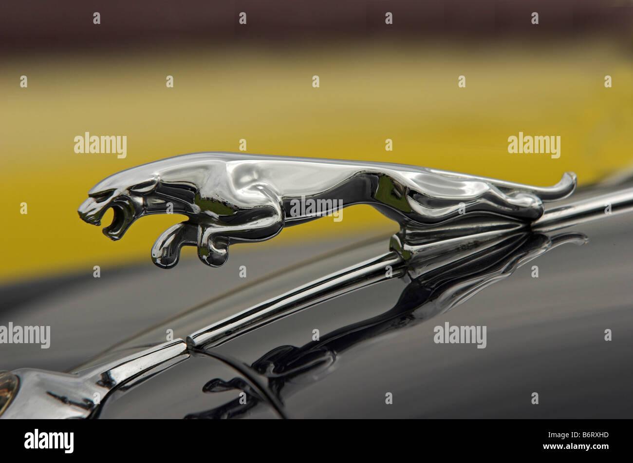 Mascote Jaguar Cars   Uma Vez Símbolo Da Engenharia Britânica Mas Agora  Propriedade Do Carro Indiano Tata Gigante