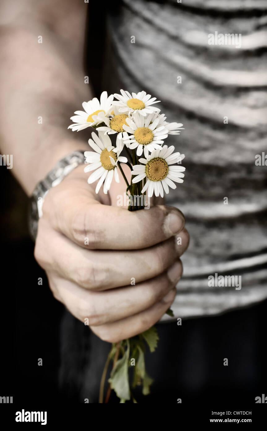 Segurando flores Imagens de Stock