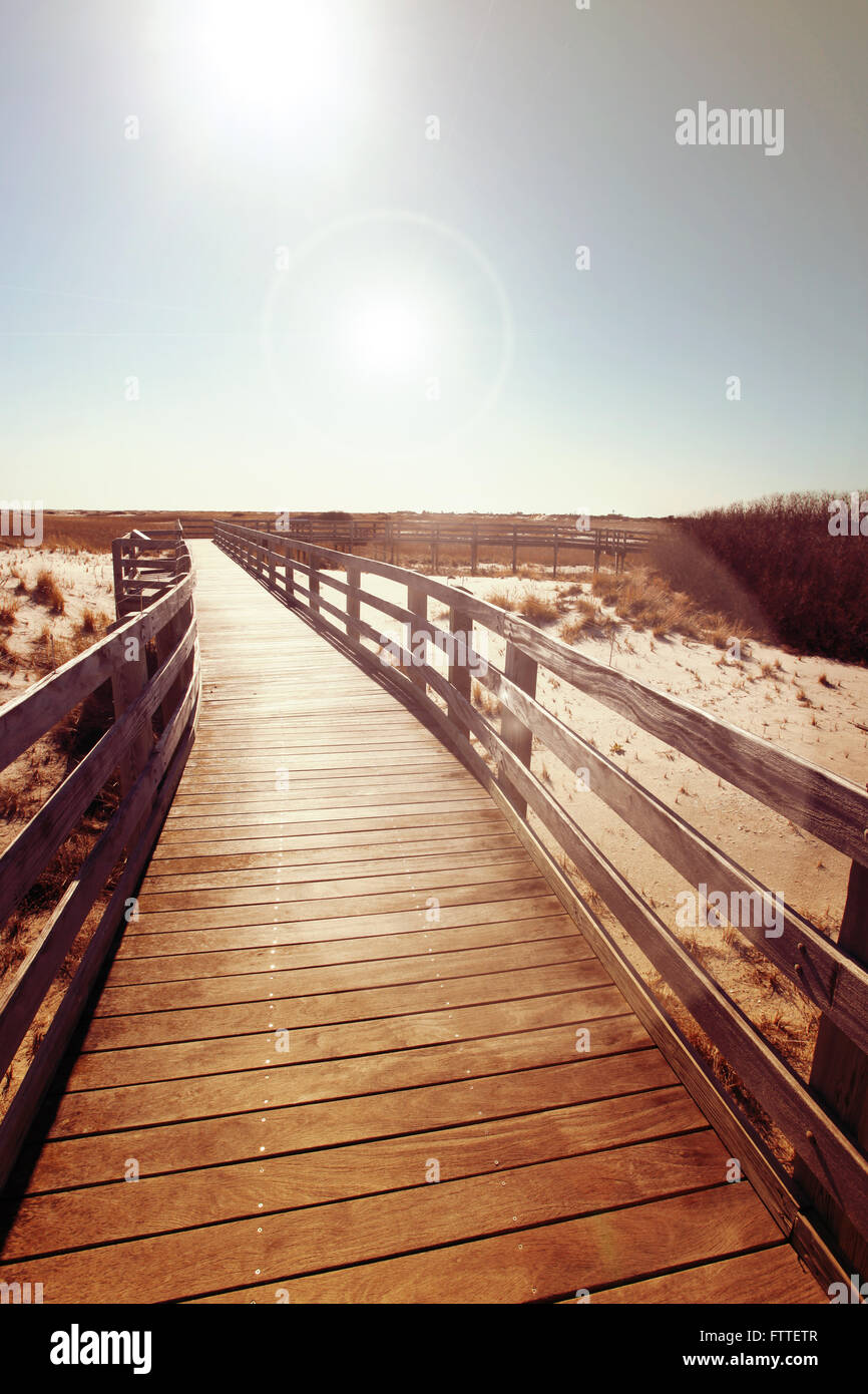 Calçadão de madeira perto de dunas Imagens de Stock