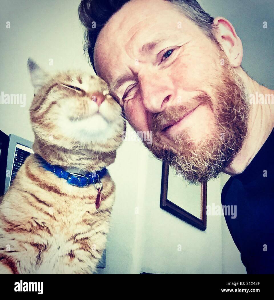 Feliz gato esfrega contra seu proprietário Imagens de Stock