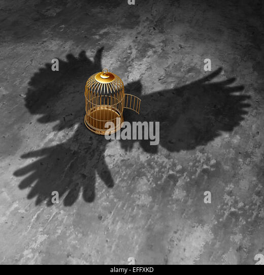 Cage freedom concept as an open birdcage with a giant bird cast shadow flying above with open wings as a symbol - Stock Image
