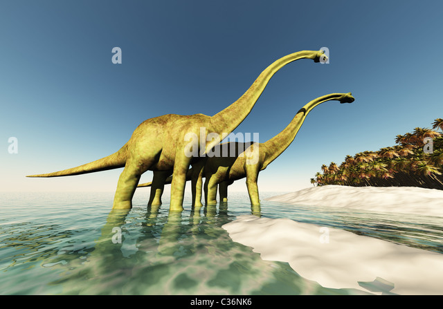 two-diplodocus-dinosaurs-wade-through-sh