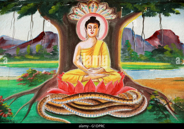 the story of the buddha shakyamuni essay Buddhism: buddhism, religion the story of a particular buddha begins before his birth and extends beyond will appear after shakyamuni's teachings and relics.