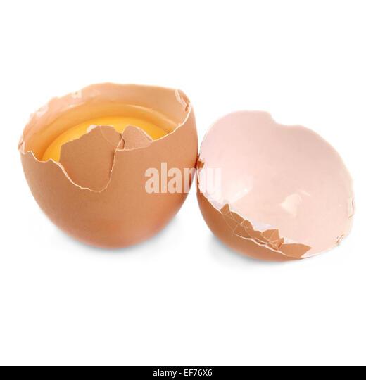 raw egg drop theory