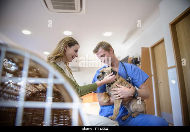 Veterinarian petting dog in lobby - Stock Image