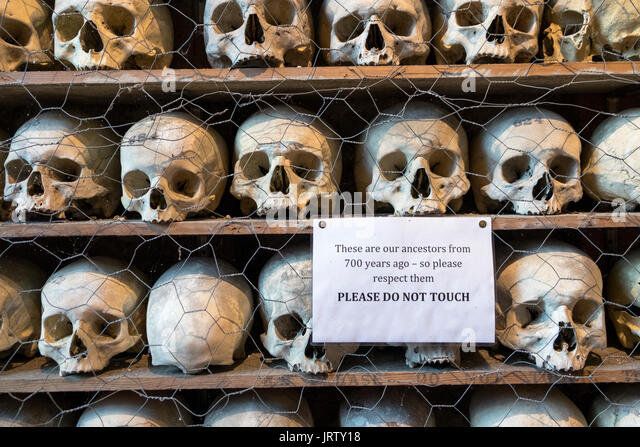 the-bones-and-skulls-collection-in-the-c