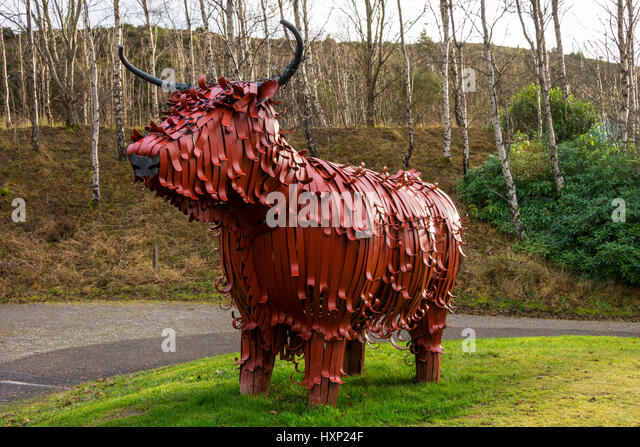 fergus-the-hairy-coo-a-sculpture-by-kev-
