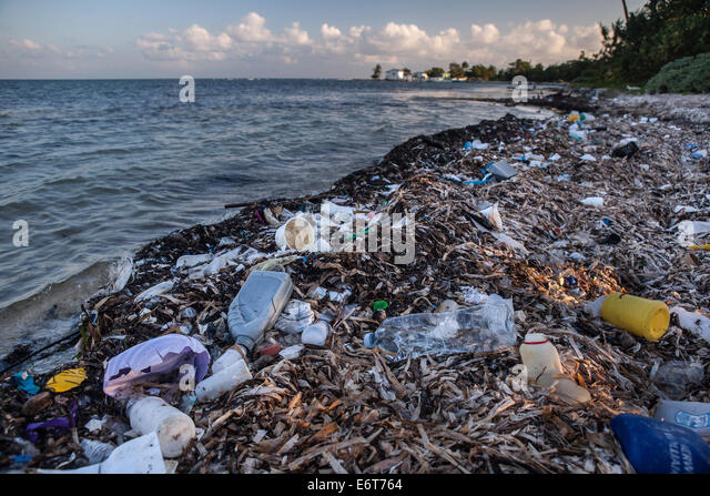 oceanic pollution Marine debris, also called marine trash, is any human-made solid material that is disposed of or abandoned on beaches, in waterways that lead to the ocean, or in the ocean itself, regardless of whether disposal occurred.