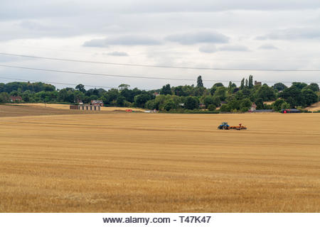 Farmer ploughing crops in bedforshire, near Flitwick - Stock Image