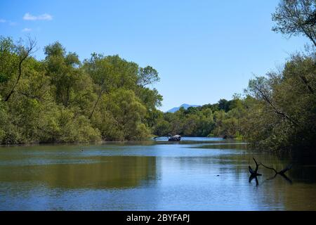 The Russian River at Riverfront Regional Park near Windsor, Sonoma County, California, USA, with a view of Mount St. Helena. - Stock Image
