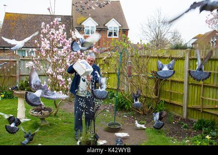 Elderly man feeding pigeons in an urban garden dozens of birds flock to feed winter overcast day Rye East Sussex UK - Stock Image