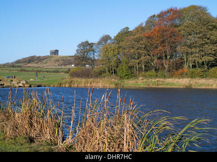 Penshaw Monument  from Herrington Country Park, Sunderland,  England, UK - Stock Image