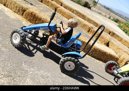 Pedal Cars at Fall Festival at Underwood Farms, Moorpark, California, USA - Stock Image