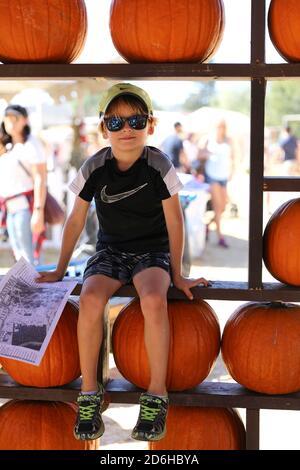 Fall Festival at Underwood Farms, Moorpark, California, USA - Stock Image