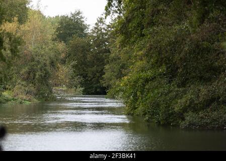 canal scene in winter on Aldermaston river - Stock Image