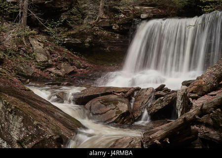 Ricketts Glen State Park, Benton, Pennsylvania, USA - Stock Image
