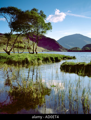 View across Llyn Dinas to Moel Hebog. Snowdonia National Park. Wales - Stock Image