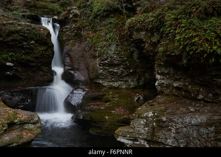 Adams Falls, Ricketts Glen State Park, Benton, Pennsylvania, USA - Stock Image