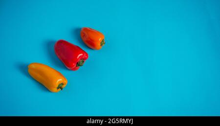 small peppers of various colors on a light blue background - Stock Image
