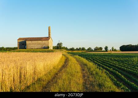 The rural small church of San Donato (XVI century) in the countryside of the town of Moimacco (Udine, Italy) - Stock Image