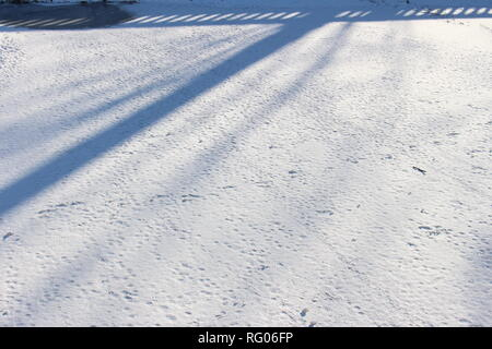 Frozen pond. Snow and ice background - Stock Image