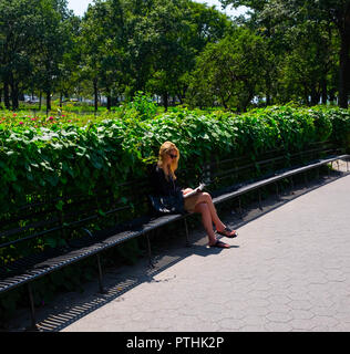 A young woman in sunglasses relaxes in the peace and sunshine of Battery Park, New York by sitting on a bench and reading a book on a lovely sunny day - Stock Image
