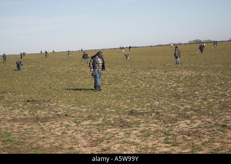 Metal detector enthusiast club searching a field Lower Hacheston, Suffolk, England - Stock Image