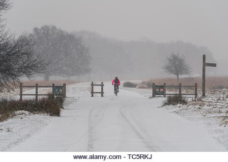 Cyclist moving through Richmond Park during the Beast from the East, UK - Stock Image