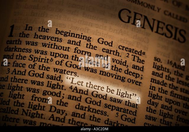 the genesis creation story essay