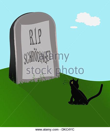 digital-composition-schrdingers-cat-1-sc