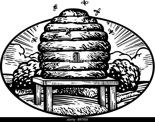 Beehive drawing black and white