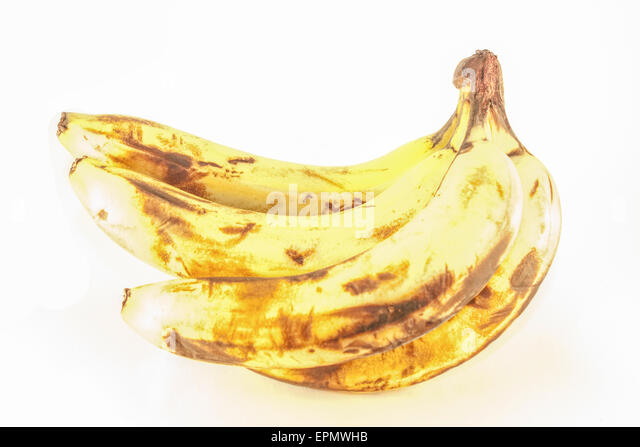 banana spoilage This ambrosial banana cream pie is filled with lots of bananas and a creamy pudding mixture once this pie is prepared, it's slipped into the.