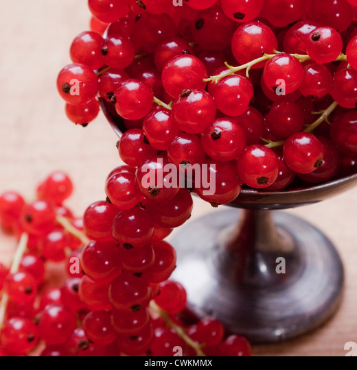 fresh and ripe currants - Stock Image
