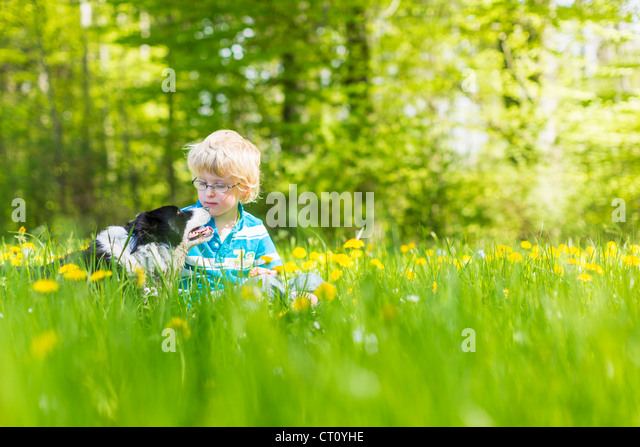 Boy with dog in field of tall grass - Stock Image